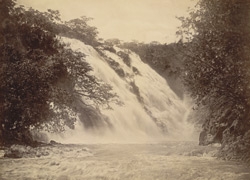 Kaveri Falls. - View from the pool at the foot of Bar Chukki.